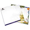 letterhead printing online