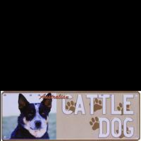 Cattle Dog
