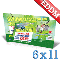 6 x 11 EDDM Postcard