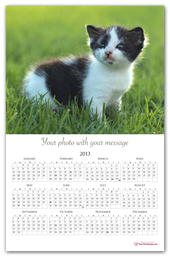 Product/Template Name: Dog Calendar Without Border