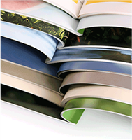 Booklets & Catalogs Offset Printing 8.5